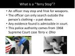 what is a terry stop