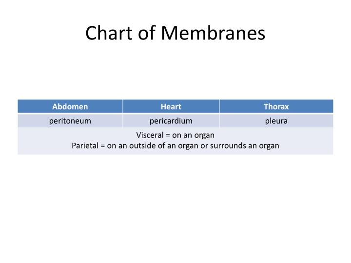 Chart of Membranes