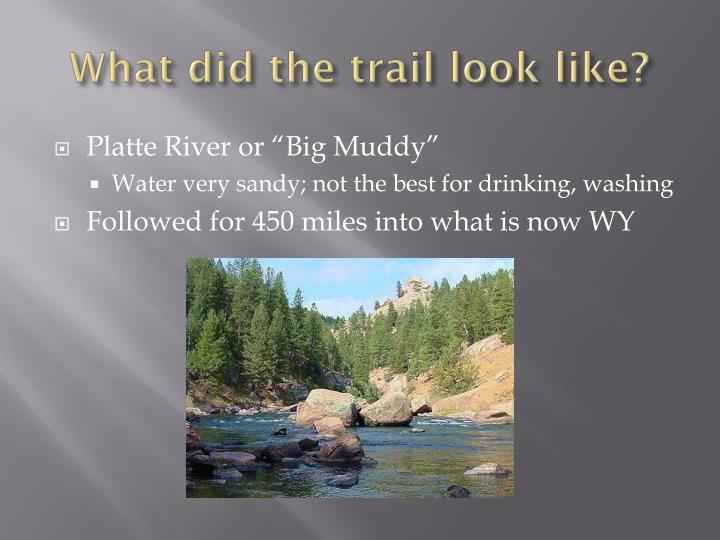 What did the trail look like?