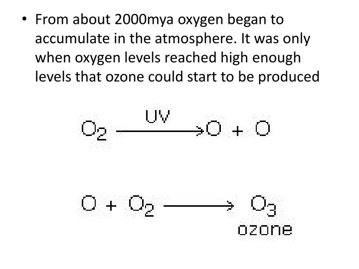 From about 2000mya oxygen began to accumulate in the atmosphere. It was only when oxygen levels reached high enough levels that ozone could start to be produced