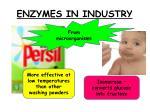 enzymes in industry