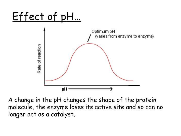Effect of pH…