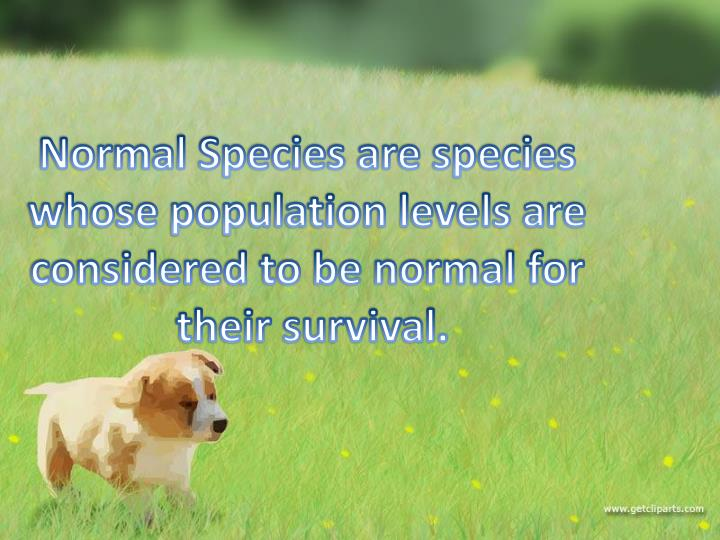 Normal Species are species