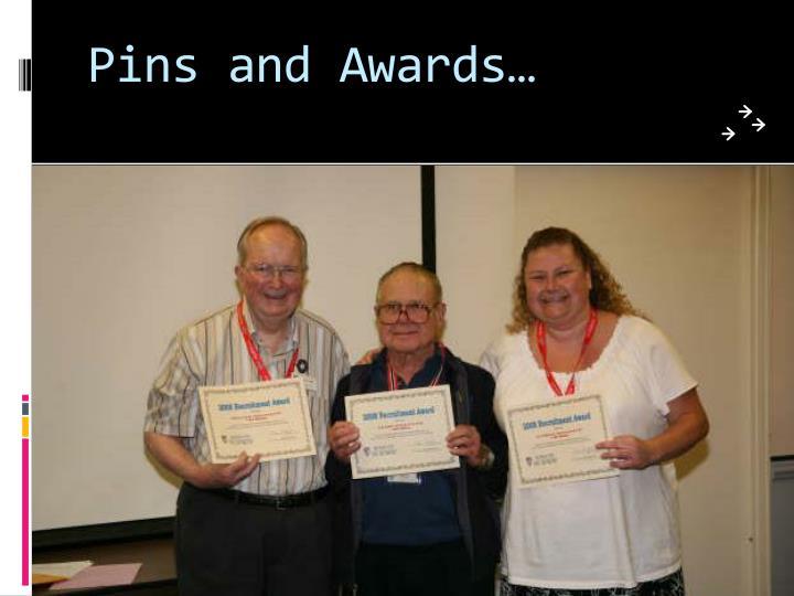 Pins and Awards…