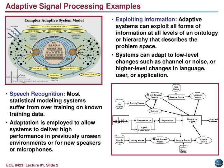 Adaptive Signal Processing Examples