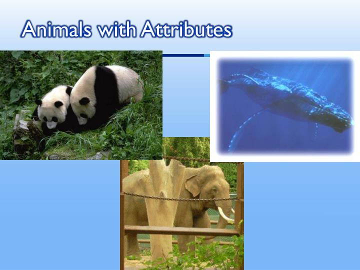 Animals with attributes