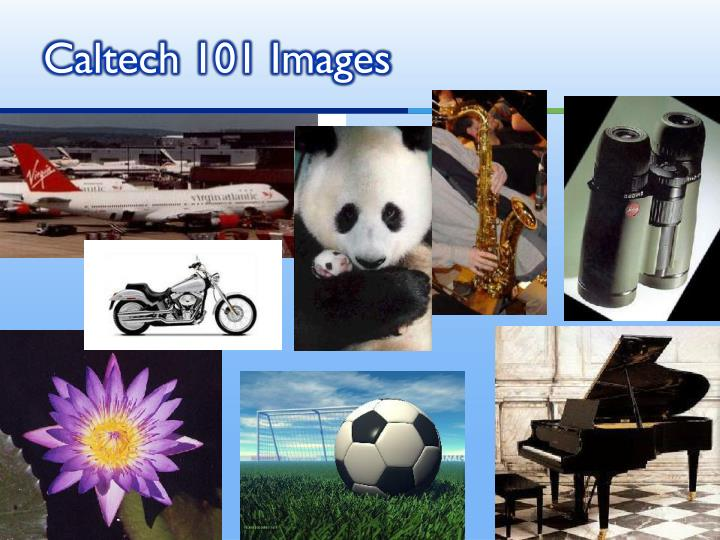 Caltech 101 Images