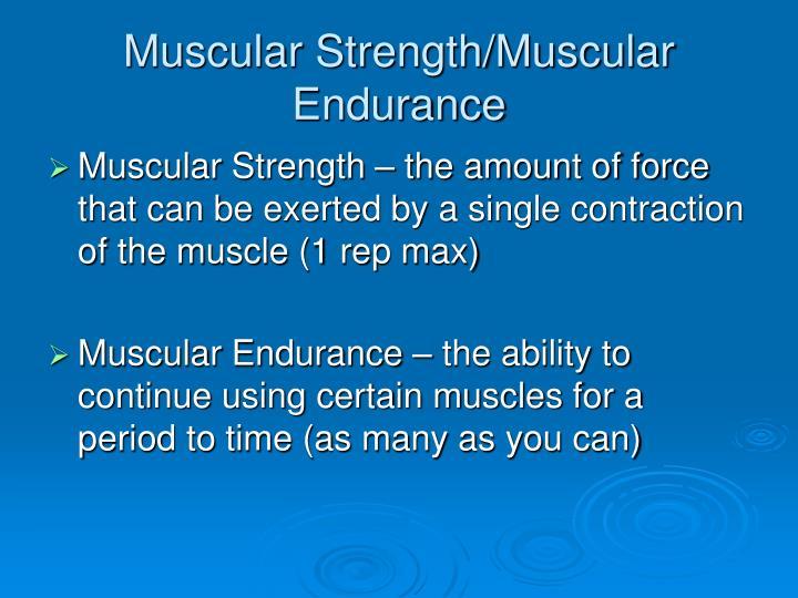 Muscular Strength/Muscular Endurance