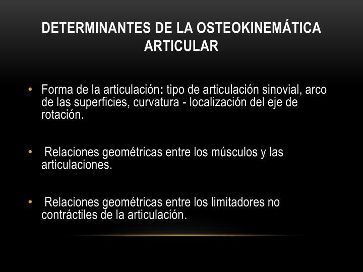 Determinantes de la Osteokinemática