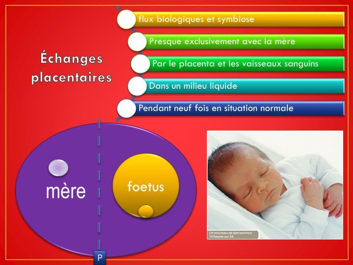 Échanges placentaires
