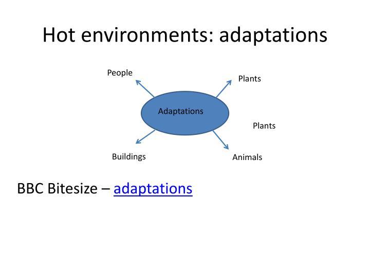 Hot environments: adaptations