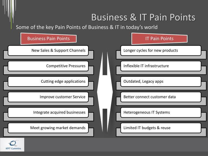 Business & IT Pain Points