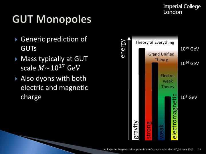 GUT Monopoles