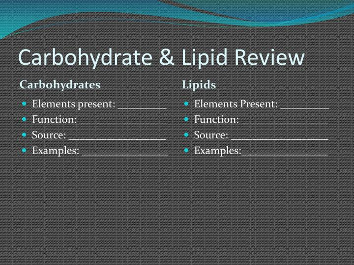 Carbohydrate & Lipid Review