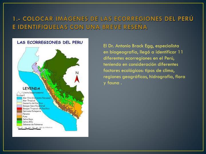 1.- COLOCAR IMÁGENES DE LAS ECORREGIONES DEL PERÚ E IDENTIFIQUELAS CON UNA BREVE RESEÑA