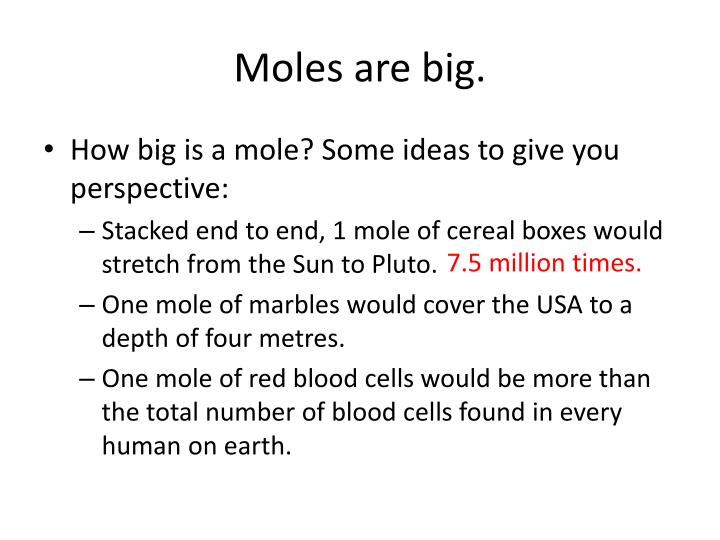 Moles are big.