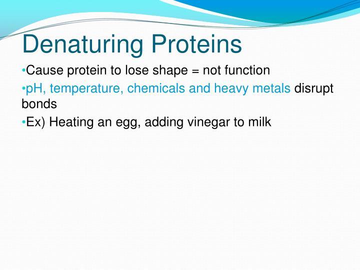 Denaturing Proteins