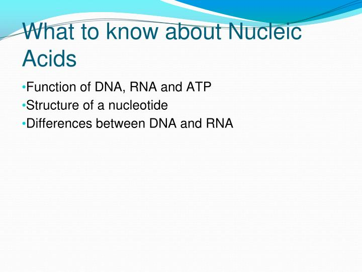 What to know about Nucleic Acids