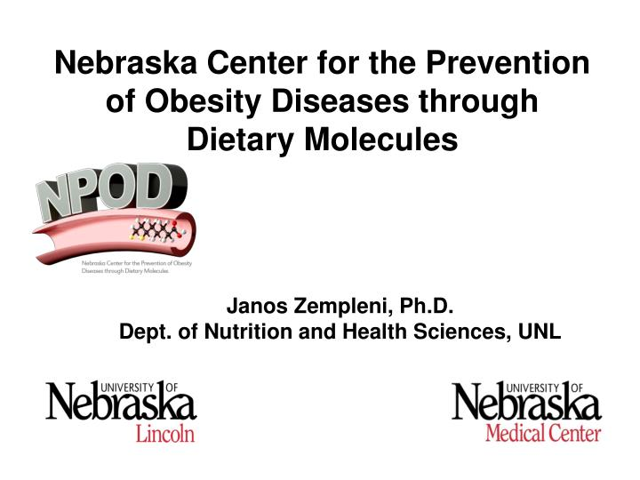 Nebraska Center for the Prevention