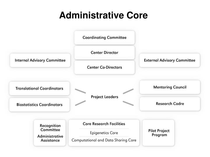 Administrative Core – the Edge