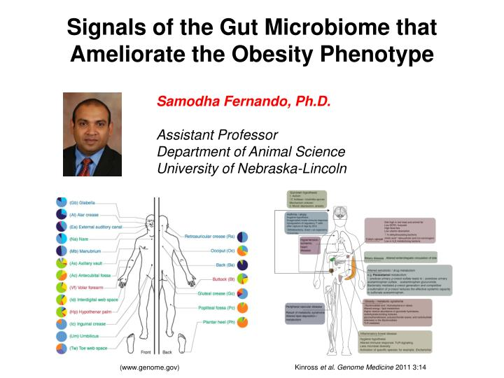 Signals of the Gut
