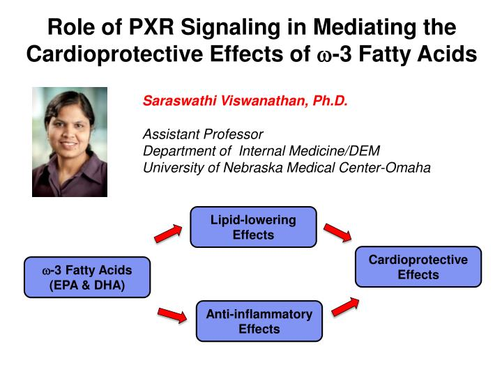 Role of PXR Signaling in Mediating the