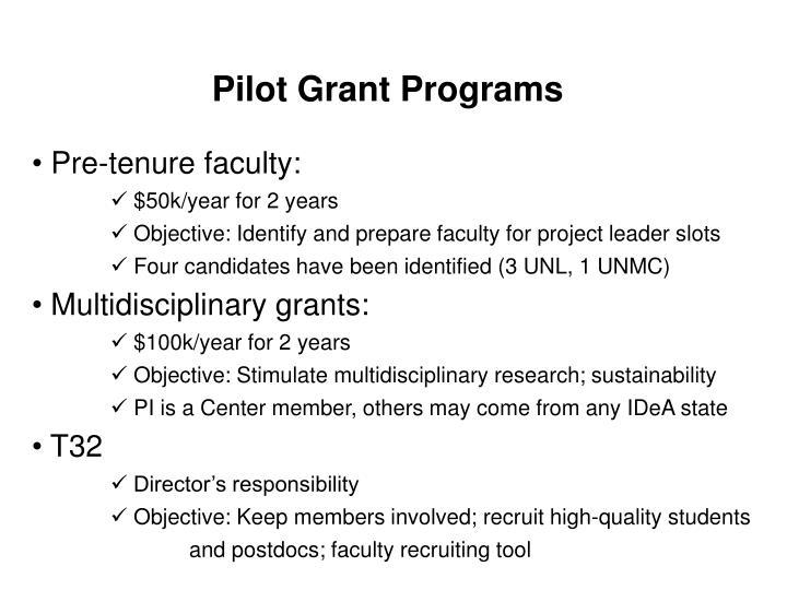 Pilot Grant Programs