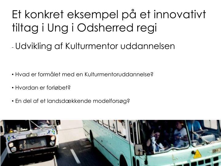 Et konkret eksempel på et innovativt tiltag i Ung i Odsherred regi
