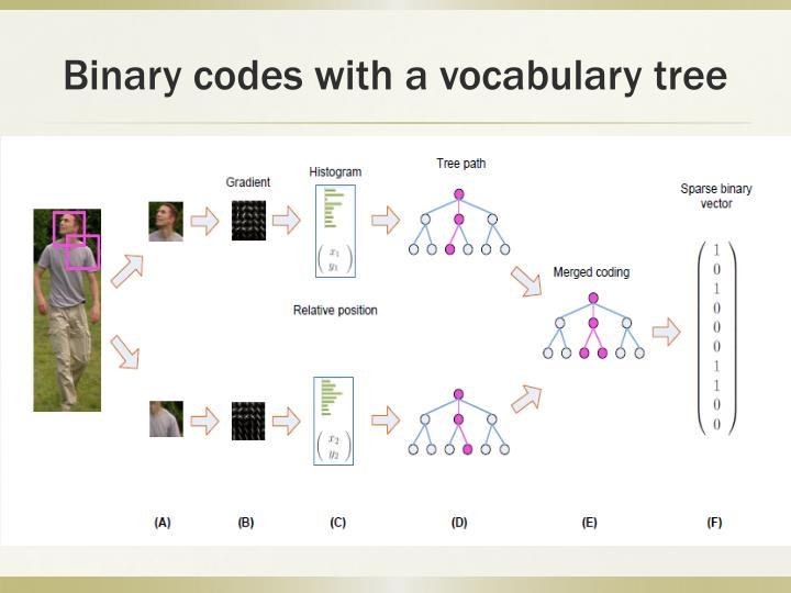 Binary codes with a vocabulary tree