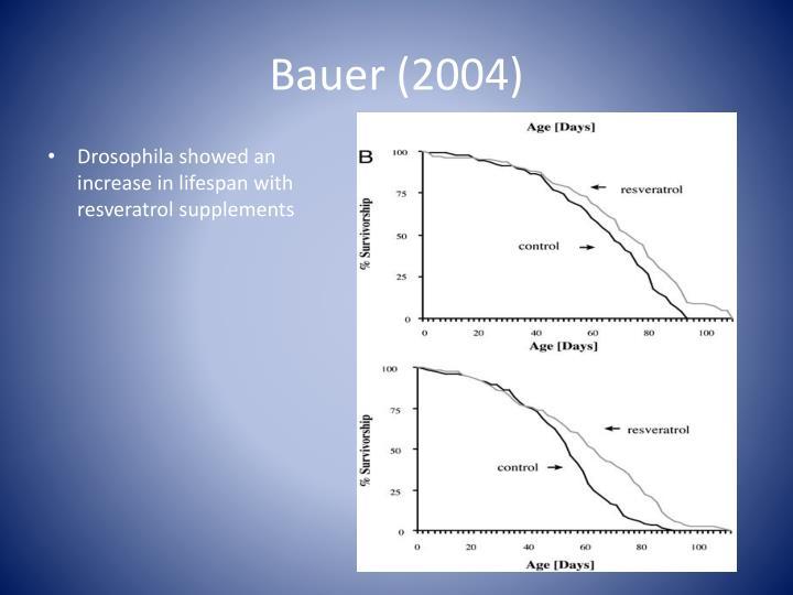Bauer (2004)