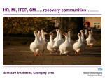 hr mi itep cm recovery communities