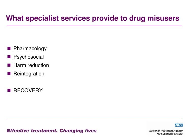 What specialist services provide to drug misusers