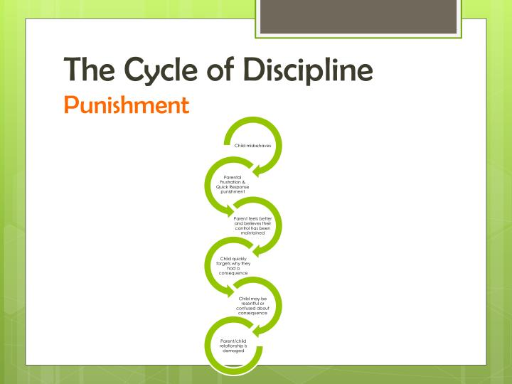 The Cycle of Discipline