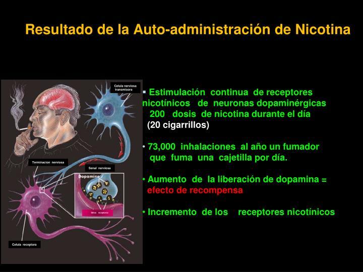 Resultado de la Auto-administración de Nicotina