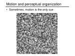 motion and perceptual organization1