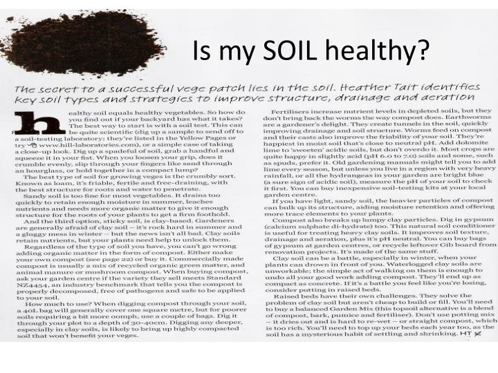 Is my SOIL healthy?