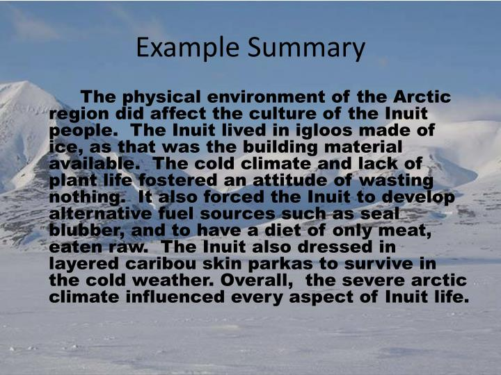 Example Summary