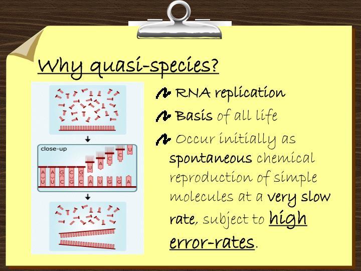 Why quasi-species?