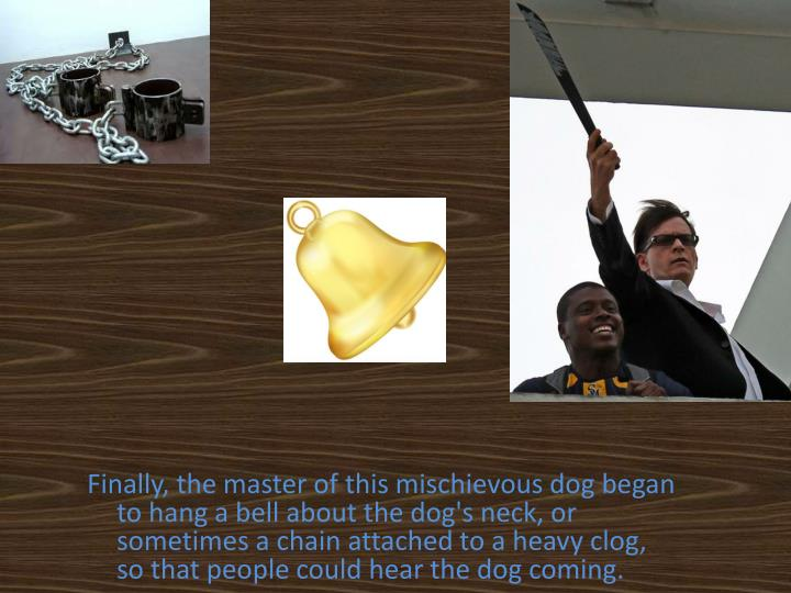 Finally, the master of this mischievous dog began to hang a bell about the dog's neck, or sometimes a chain attached to a heavy clog, so that people could hear the dog coming.
