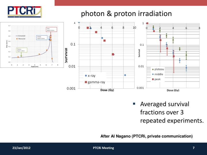 photon & proton irradiation