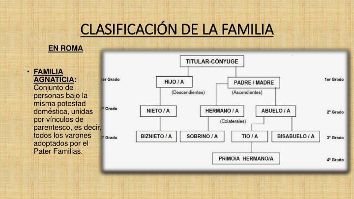 CLASIFICACIÓN DE LA FAMILIA