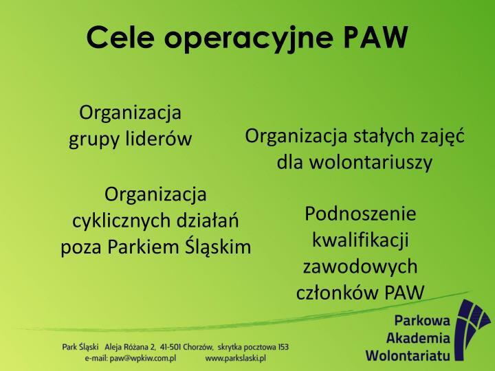 Organizacja grupy liderów