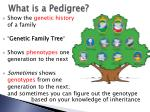 what is a pedigree