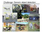 challenge generic object detection