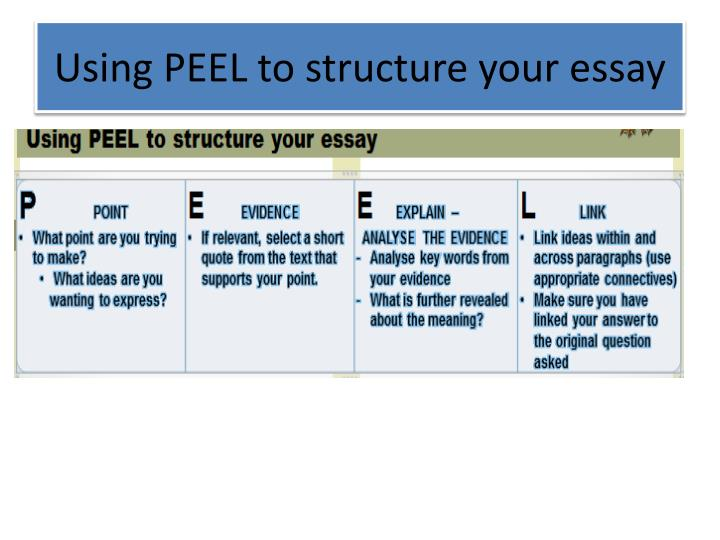 peel essay writing structure Peel essays - see the list of sample papers for free - bla bla writing peel essays - see the list of sample papers for free bla bla writing peel use the following phrases like: peel.