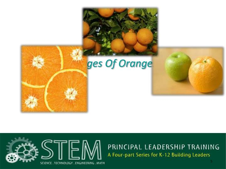 Images Of Oranges