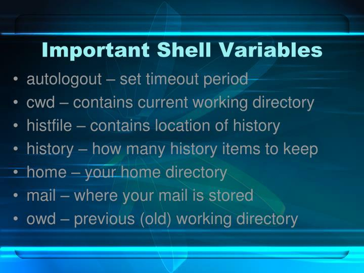 Important Shell Variables