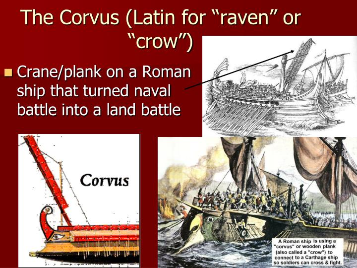 "The Corvus (Latin for ""raven"" or ""crow"")"