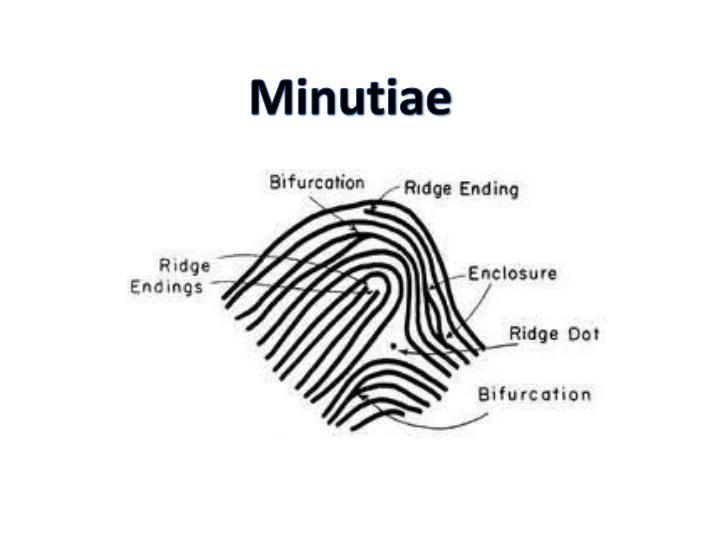 Minutiae