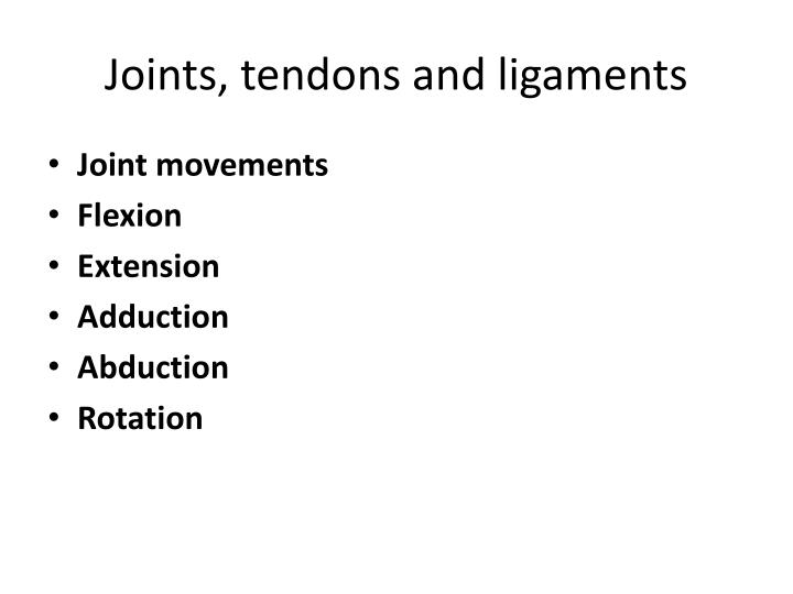 Joints, tendons and ligaments